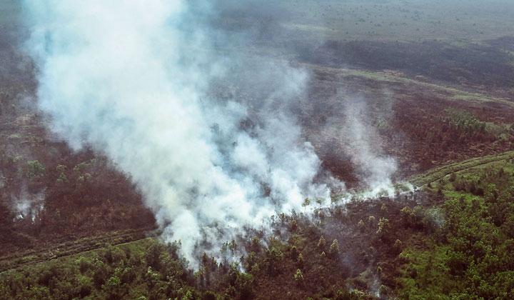 Retorika Pengendalian Kebakaran Hutan